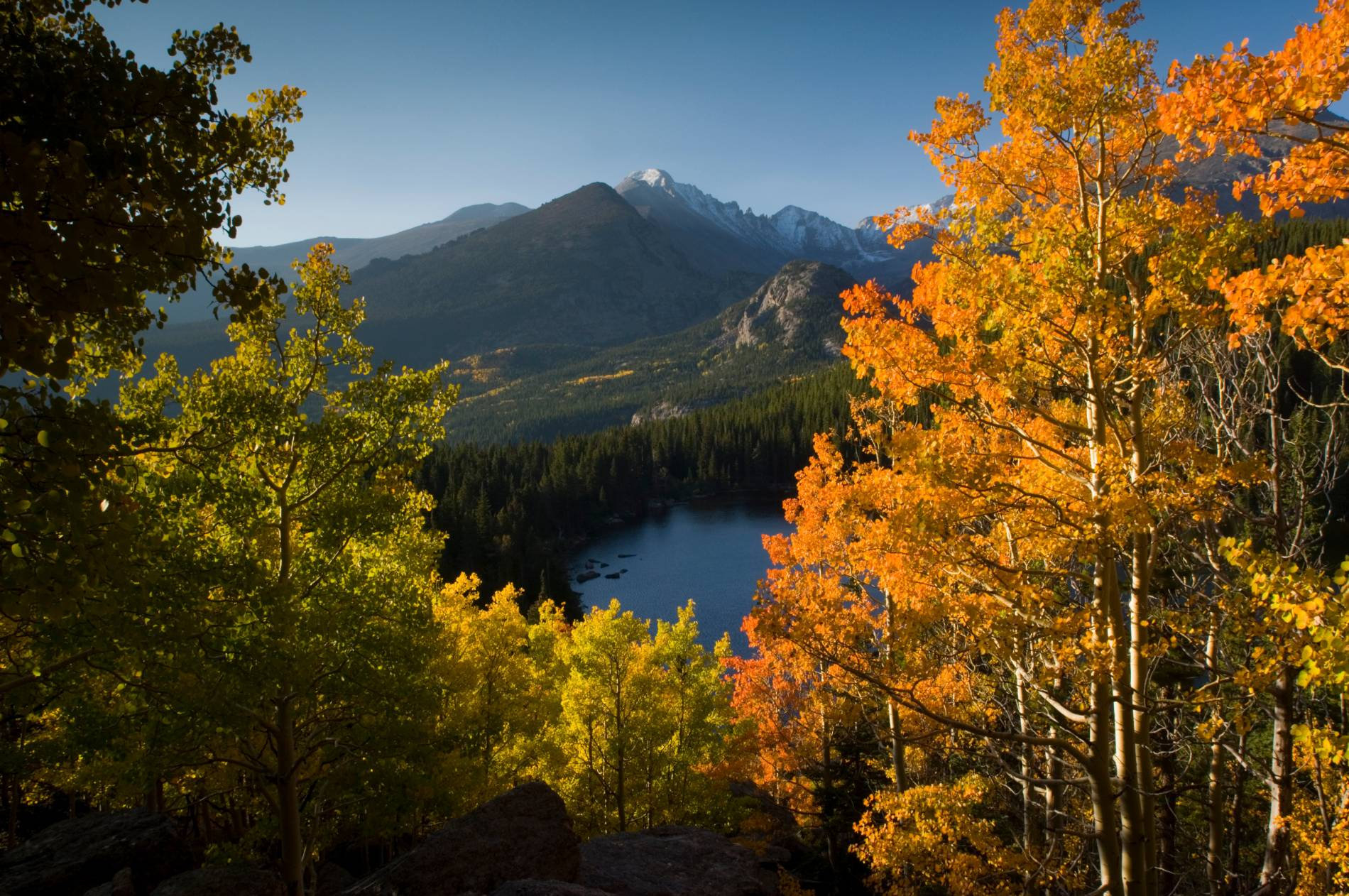 Golden leaves and snow capped mountains
